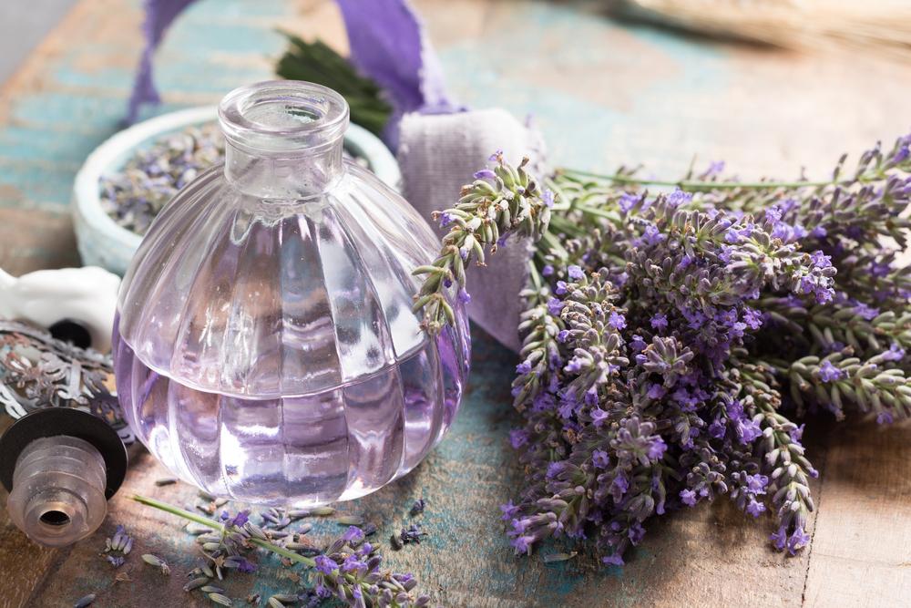 Cosmeticology & Perfumery